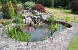 A Heron Guard Fitted To A Pond With A Hard Surround